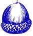 acorn_blue