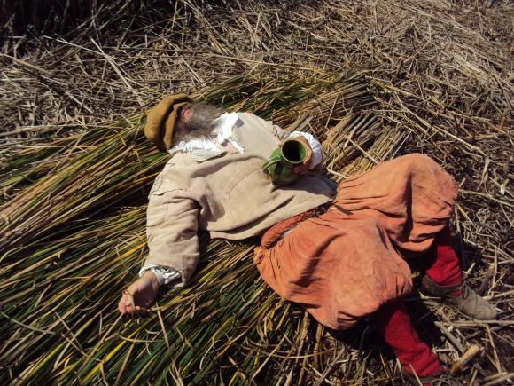 Thatch Pilgrims 2010062