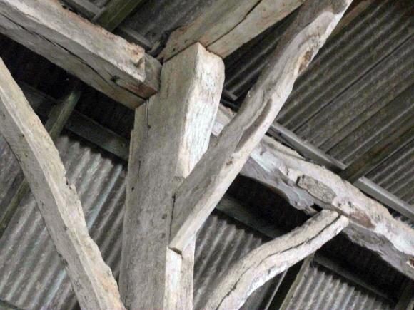 DSCF7638-Bury.Fm.Barn.scarf